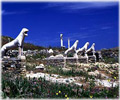 delos terrace of lions